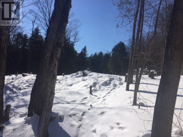 Lt 3 Pretty River Road, The Blue Mountains, Ontario  L0M 1P0 - Photo 5 - 40054841