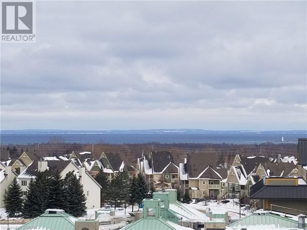 170 Jozo Weider Boulevard Unit# 431, The Blue Mountains, Ontario  L9Y 3Z2 - Photo 19 - 40054895